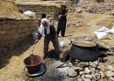 ابلاغ ثبت ملی هشت اثر میراث فرهنگی ناملموس کردستان