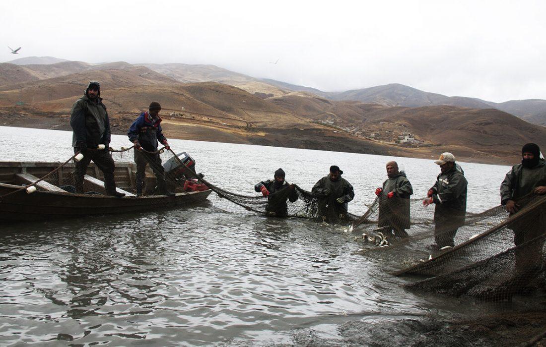 آغاز صید ماهی در منابع آبی کردستان