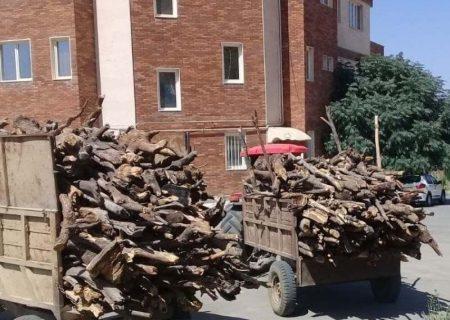 ضبط بیش از ۱۰ تن چوب قاچاق در مریوان